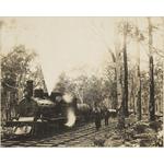 1458B/8: Log rake, locomotive hauling logs, Yarloop, Western Australia, ca. 1903.