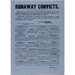 Return of convicts who have escaped from the Colony and whose absconding has been notified to this office between the 1st June 1850 and the 31st March 1859 PR 14583